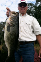 January trophy bass