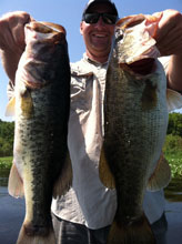 Client fishing with Eddie Bussard on the St Johns River System in Florida